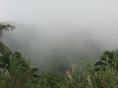 Morning mist on the road to Manunggal