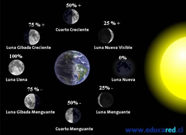 Vive Sana: Las fases de la Luna y la Salud.