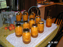 Peaches 2007