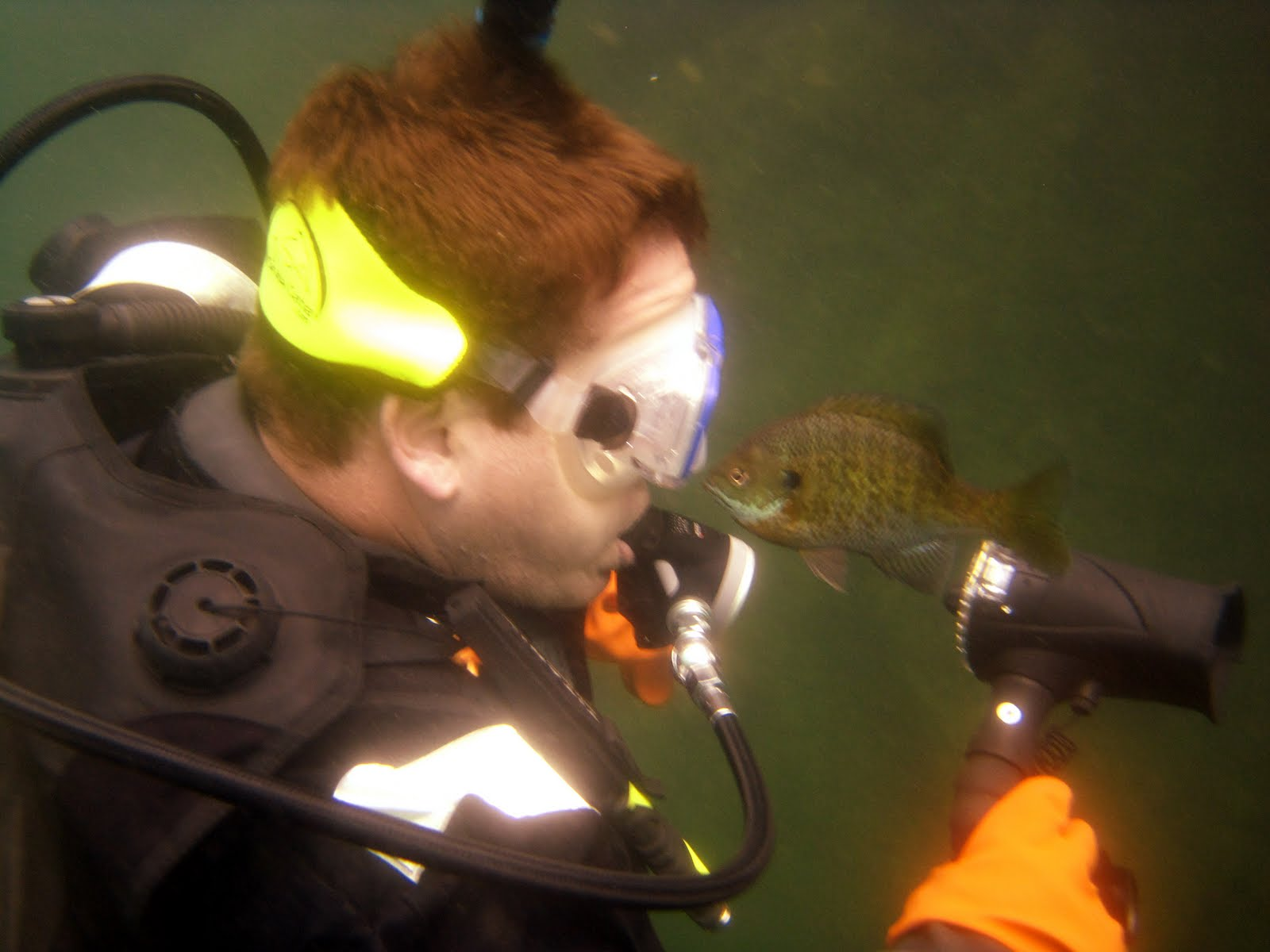 Life in the great midwest scuba diving haigh quarry for The fish whisperer