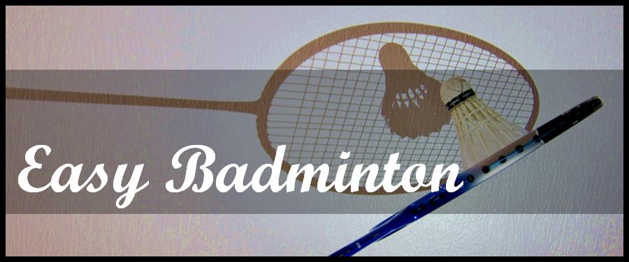 Badminton Champion Milestones