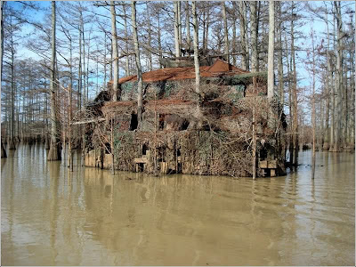 WTF!!!! Serious Duck Blind