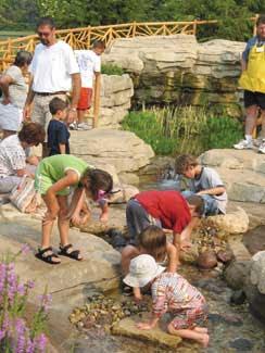 Morton Arboretum S New Children S Garden Therapeutic Landscapes Network