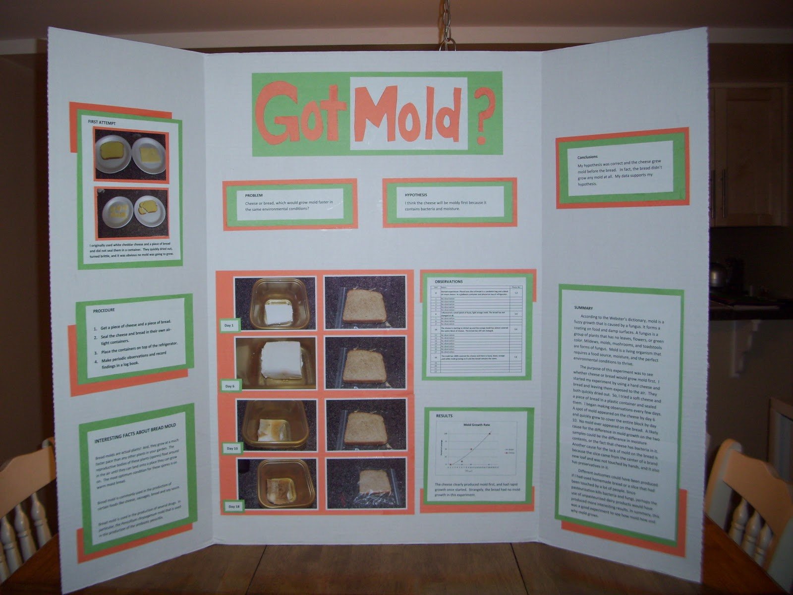 bread mold science project Do hand soaps and sanitizers prevent the growth of bread mold if so, why kids will find out with this fun and informative science fair project idea.
