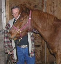 Princess, A wild horse?