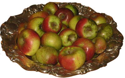 Lady Apples from Reed Valley Orchard