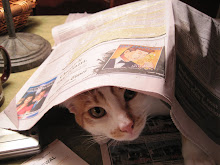 What 'cha readin' ?