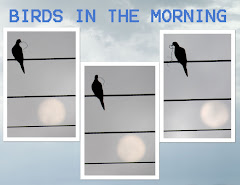 BIRDS IN THE MORNING