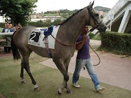 Objetivo 2010.: Valderas