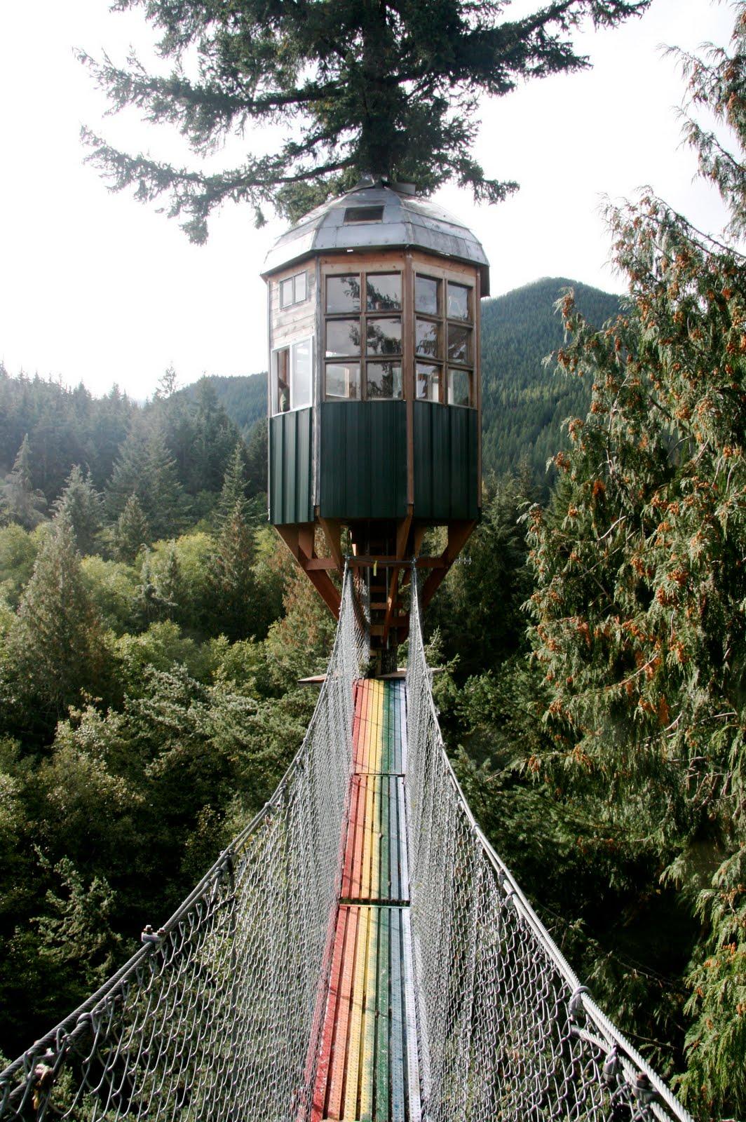 France Is Hexagonal Cedar Creek Treehouse Part Ii