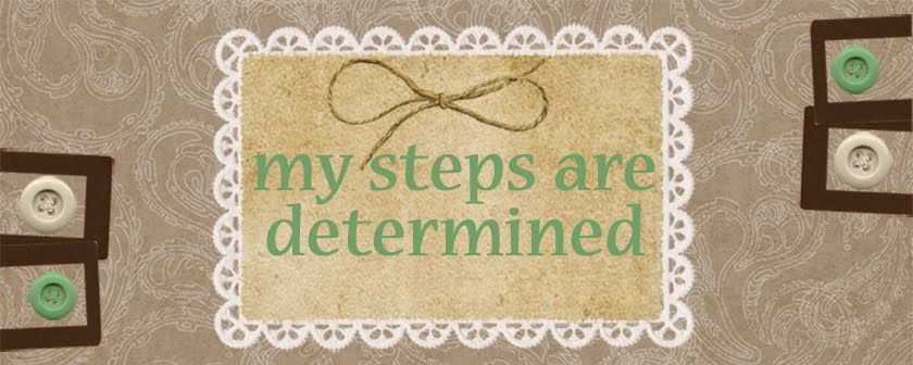 My Steps are Determined  Proverbs 16:9