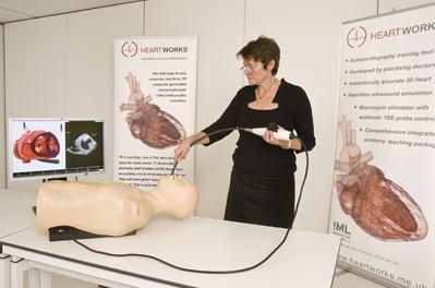 Ecocardiografía transtorácica en HeartWorks