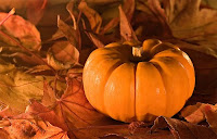 thanksgiving pumpkin animated pictures