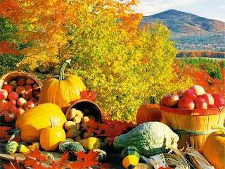Fall Harvest Wallpaper