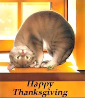 happy thanksgiving kitty mobile background