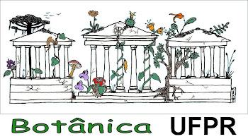 Botânica UFPR