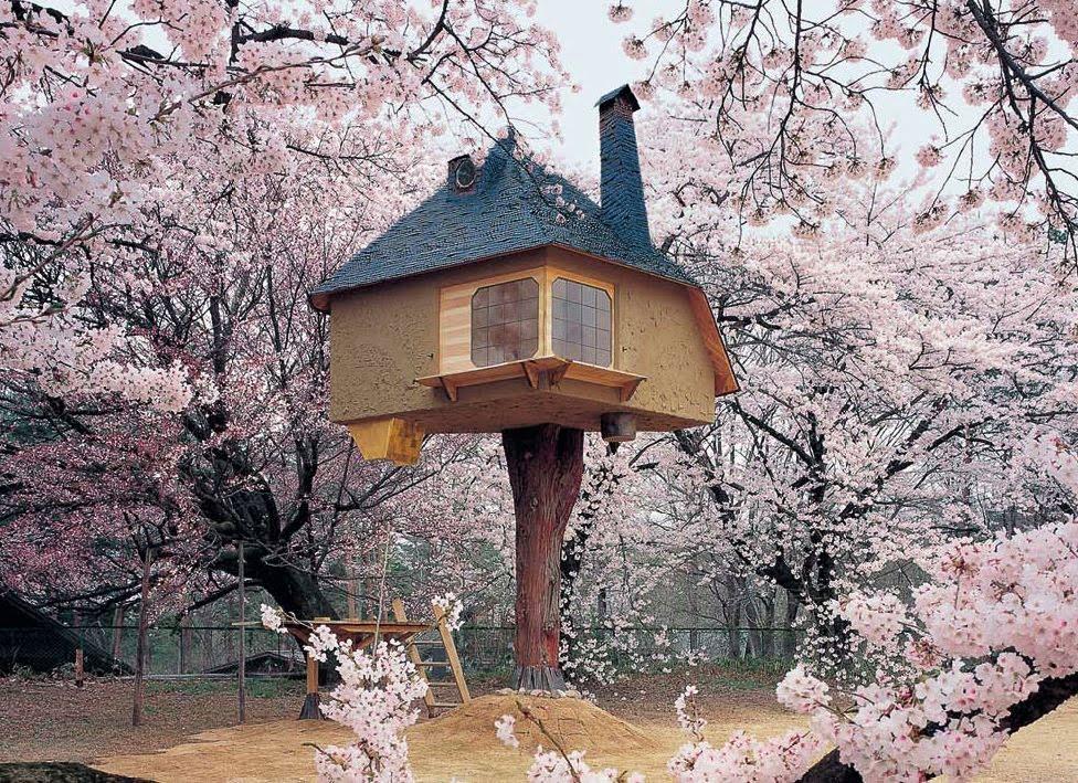 [teahouse1]