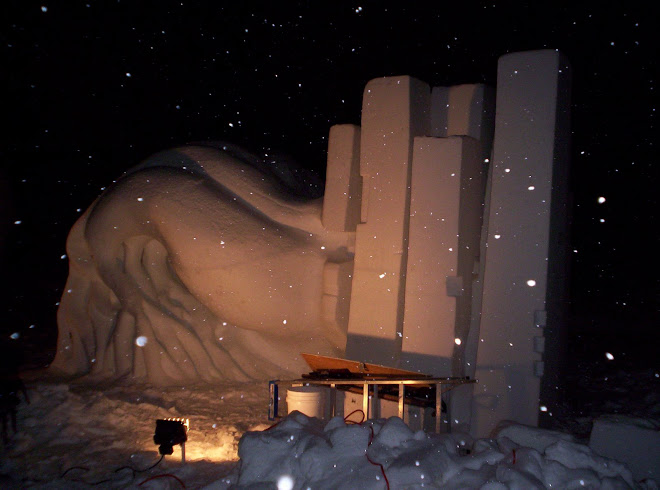 En la noche - nevando - Penultimo día
