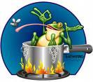 [frog+boiling]