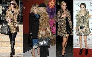 Leopard Madness.