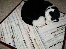 "Gail Mitchell's ""Cat Mat"""