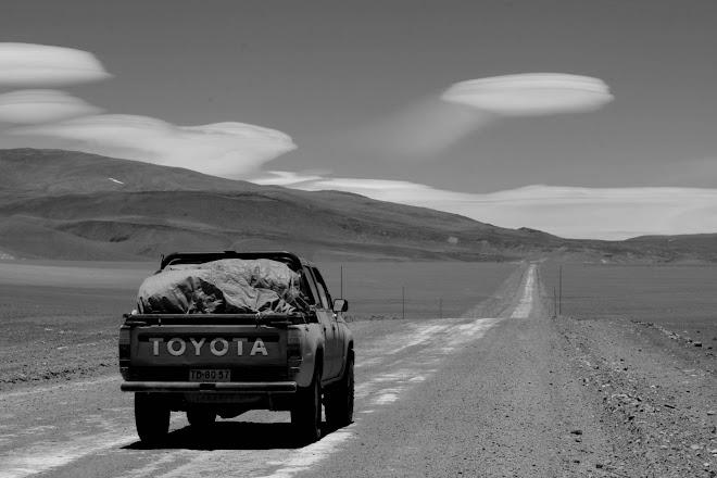 Com deia, l'aigua és vida. A uns 4700m d'alçada, el desert d'Atacama (Chile) et dóna sorpreses