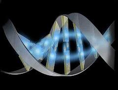 EL ADN ACTUAL