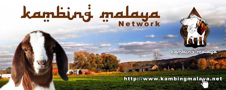 KAMBING MALAYA NETWORK (KMN)
