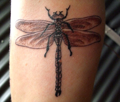 shimmering Dragonflies Tattoos either on their lower backs,