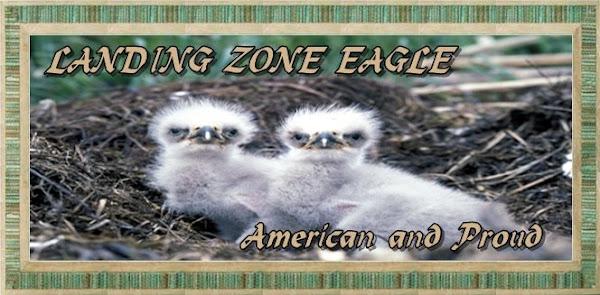 Landing Zone Eagle