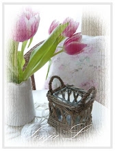 Jaro,tulipány ze zahrady