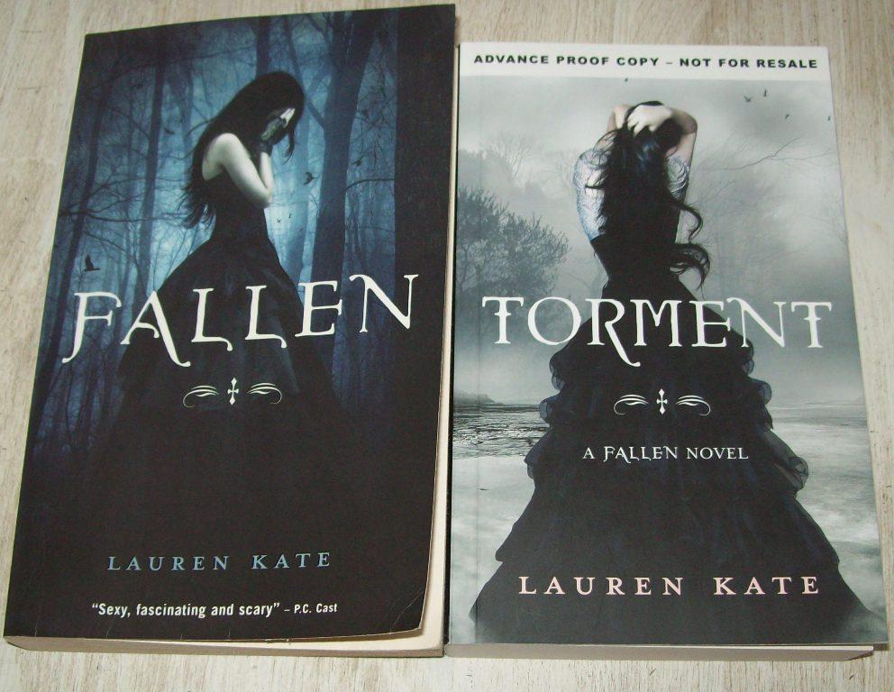 The Fallen Novel Series