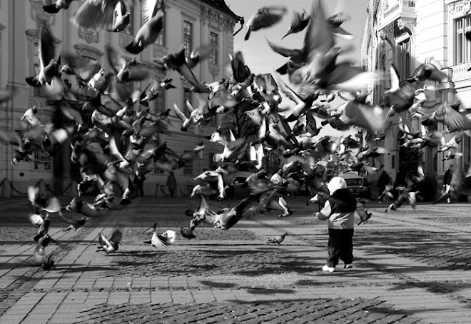 stool-pigeon