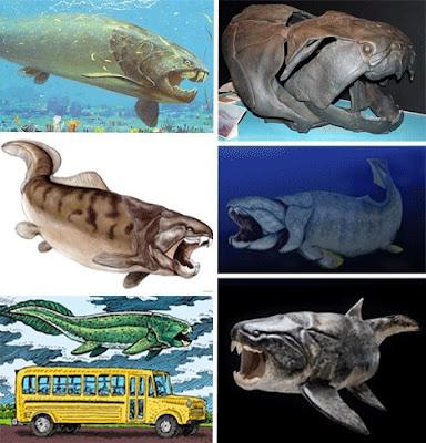 十四種已滅絕怪獸 鄧氏魚