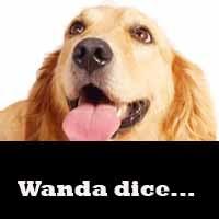 Wanda dice...