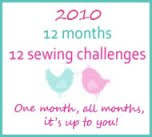 2010 12 month challenges