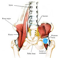 hip flexor and buttock pain