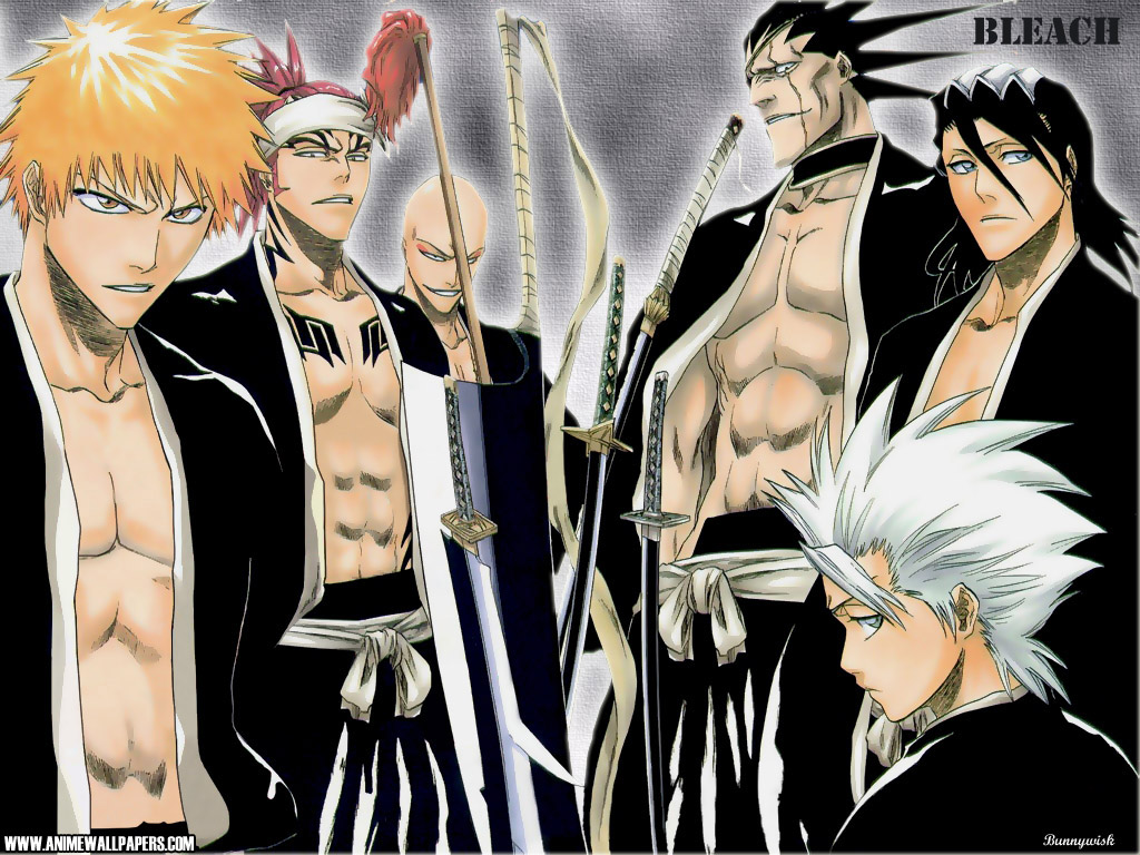 bleach characters  captains