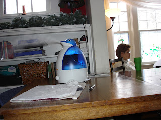 In the foreground, a new vaporizer shaped like a penguin blows a soft cloud of mist while in the background, outlined by the harsh white light of a winter window, Mommy sits at her computer.