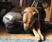 Scotch Dog & Leonard
