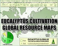 Eucalyptus globulus cultivated forests worldwide / Eucalyptus globulus cultivation map / Tasmanian Blue Gum forests in the world / Mapa de plantaciones de Eucalipto globulus en el mundo / Mapa de cultivo de Eucalipto globulus en el mundo / Gustavo Iglesias Trabado / GIT Forestry Consulting - Consultoría y Servicios de Ingeniería Agroforestal, Lugo, Galicia, España, Spain / Eucalyptologics - Information Resources on Eucalyptus Cultivation Around the World