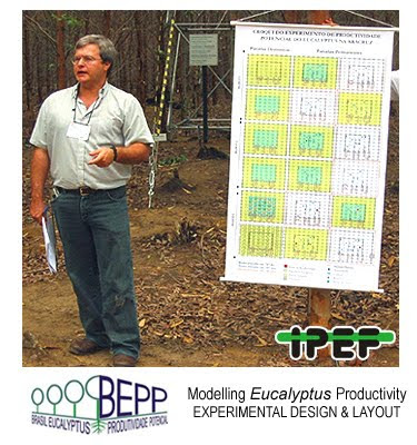 Eucalyptus Field Laboratory Design and Layout / Laboratorio Forestal del Eucalipto, Diseño Experimental / Jose Luiz Stape (North Carolina State University), Dan Binkley (Colorado State University), Mike Ryan (USDA) et al / BEPP - Brazil Eucalyptus Potential Productivity Project: Influence of water, nutrients and stand uniformity on wood production / BEPP - Proyecto de Modelizacion de la Productividad Potencial del Eucalipto: Influencia de la disponibilidad de agua, nutrientes y la homogeneidad del rodal en la produccion de madera / Gustavo Iglesias Trabado, Roberto Carballeira Tenreiro and Javier Folgueira Lozano / GIT Forestry Consulting SL, Consultoría y Servicios de Ingeniería Agroforestal, Lugo, Galicia, España, Spain / Eucalyptologics, information resources on Eucalyptus cultivation around the world / Eucalyptologics, recursos de informacion sobre el cultivo del eucalipto en el mundo
