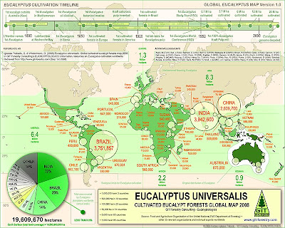 Eucalyptus cultivated forests worldwide map 2008 / Eucalyptus cultivation map 2008 / Eucalypt forests in the world / Mapa de plantaciones de eucalipto en el mundo 2008 / Mapa de cultivo de eucalipto en el mundo / Gustavo Iglesias Trabado y Dennis Wilstermann / GIT Forestry Consulting - Consultoría y Servicios de Ingeniería Agroforestal, Lugo, Galicia, España, Spain / Eucalyptologics - Information Resources on Eucalyptus Cultivation Around the World - Recursos de informacion sobre el cultivo del eucalipto en el mundo