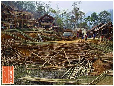 Eucalyptus and bamboo poles for housing and building in refugee camps of Thailand and Cambodia