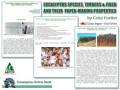 Eucalyptus Species, Woods, Cellulosic Fibres & Papermaking Properties / Eucalyptus Online Book, March 2009, by Celso Foelkel / Eucalyptus Wisdom from Brazil / Eucalipto: Especies, Maderas, Fibras Celulósicas y sus propiedades para la Fabricación de Papel / Libro Online Eucalipto, Marzo 2009, por Celso Foelkel / Ecoeficacia, Ecoeficiencia, Produccion Mas Limpia / Sabiduría eucalíptica desde Brasil