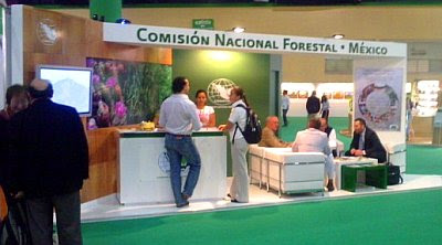 Contact GIT Forestry Consulting / Contact Eucalyptologics / Contacto GIT Forestry Consulting / Contacto Eucalyptologics / Gustavo Iglesias Trabado, Roberto Carballeira Tenreiro, Javier Folgueira Lozano y Asociados / GIT Forestry Consulting SL, Consultoría y Servicios de Ingeniería Agroforestal, Lugo, Galicia, España, Spain / Eucalyptologics, information resources on Eucalyptus cultivation around the world / Eucalyptologics, recursos de informacion sobre el cultivo del eucalipto en el mundo