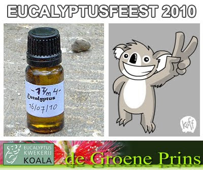Eucalyptus Oil Distillation / Eucalyptusfeest 2010 / Koala Eucalyptuskwekerij / de Groene Prins Kwekerij// GIT Forestry Consulting SL / Gustavo Iglesias Trabado, Roberto Carballeira Tenreiro and Javier Folgueira Lozano / GIT Forestry Consulting SL, Consultoría y Servicios de Ingeniería Agroforestal, Lugo, Galicia, España, Spain / Eucalyptologics, information resources on Eucalyptus cultivation around the world / Eucalyptologics, recursos de informacion sobre el cultivo del eucalipto en el mundo