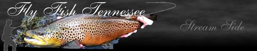 Fly Fish Tennessee Blog