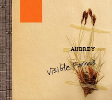 AUDREY - Visible Forms (2006)