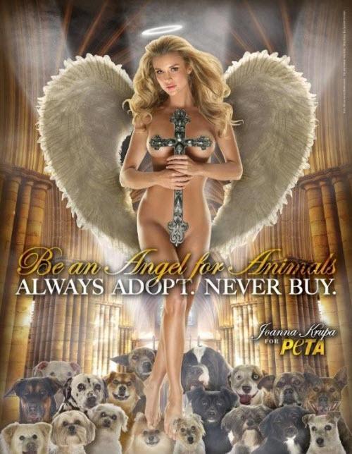 Sé un angel para los animales...